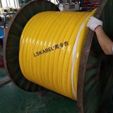 缆胜 特殊订制电缆4G16+8*1.5 LST86400702D