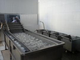 揽月3.2米全自动蔬菜清洗机 臭氧循环水果蔬菜去尘设备 工厂专用