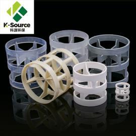 科源环保 塑料鲍尔环填料 可加工定制