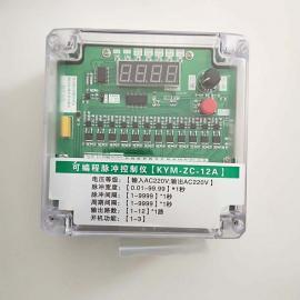 �磁�y�}�_控制�x使用�f明�� 12路