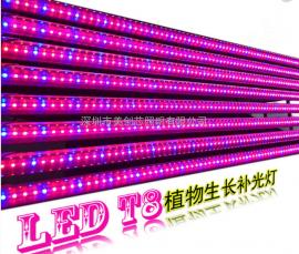 T8LED植物灯管