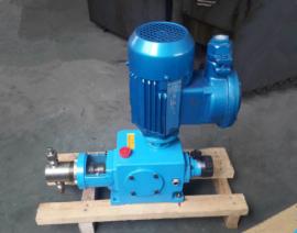 耐高温高压柱塞式计量泵 酸碱药液定量输送泵