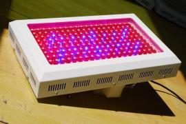 LED补光灯组培日光灯厂家