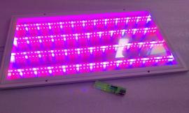 大棚育苗LED补光灯组培灯