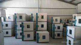 恒温智能鼓风干燥箱 热风干燥箱 小型热风烘干箱生产