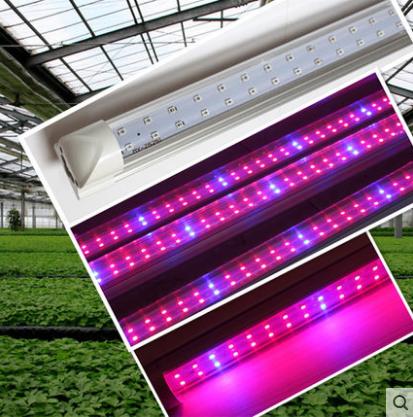 新款自然光led大棚植物灯