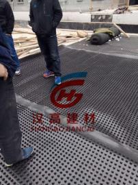 2公分阻根防穿刺排水板