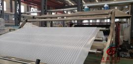 塑料凸片排水板