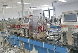 细胞反应器