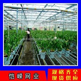 花卉移动苗床网 可移动苗床网现货