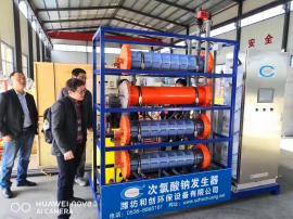 大型水厂消毒设备/水厂次氯酸钠发生器工艺原理