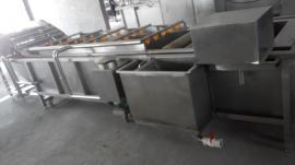 辣椒清洗机 气泡式蔬菜清洗机