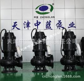 WQ不锈钢污水处理泵
