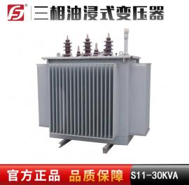 S11-30KVA 10-11/0.4 全密封油浸式电力变压器 全铜