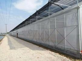 温室大棚防雾滴薄膜/薄膜温室大棚/连栋智能薄膜温室大棚