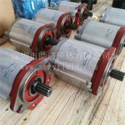意大利萨拉米SALAMI汽轮机用齿轮泵液压泵2.5PB44D-G55-S2-1