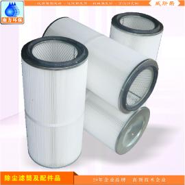 除尘标准型滤芯滤筒 涂装喷粉粉尘过滤器 粉尘回收滤芯品质保证