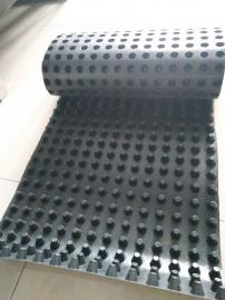 16mm厚排水板塑料排水板销售