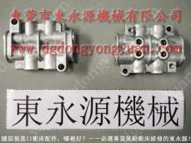 双手光电保护装置,脱压式电动注油机CEN04 找东永源