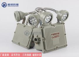 YM-ZFZD-E6W-BAJ52系列防爆应急灯 6WLED双头应急灯
