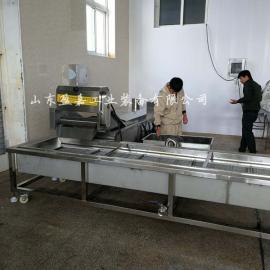 西蓝花连续式漂烫机,果蔬漂烫冷却生产线