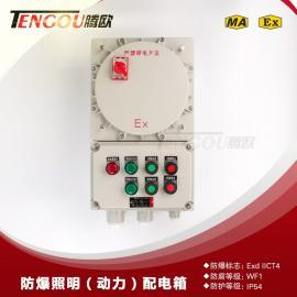 铝合金IIC级带总开关防爆控制箱