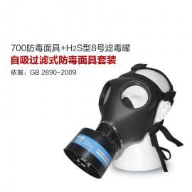 700全面罩防毒面具+HG-ABS/P-H2S-2滤毒罐 硫化氢活性炭防毒面具