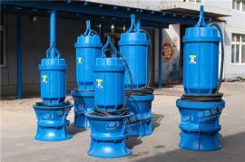 海水专用泵潜水轴流