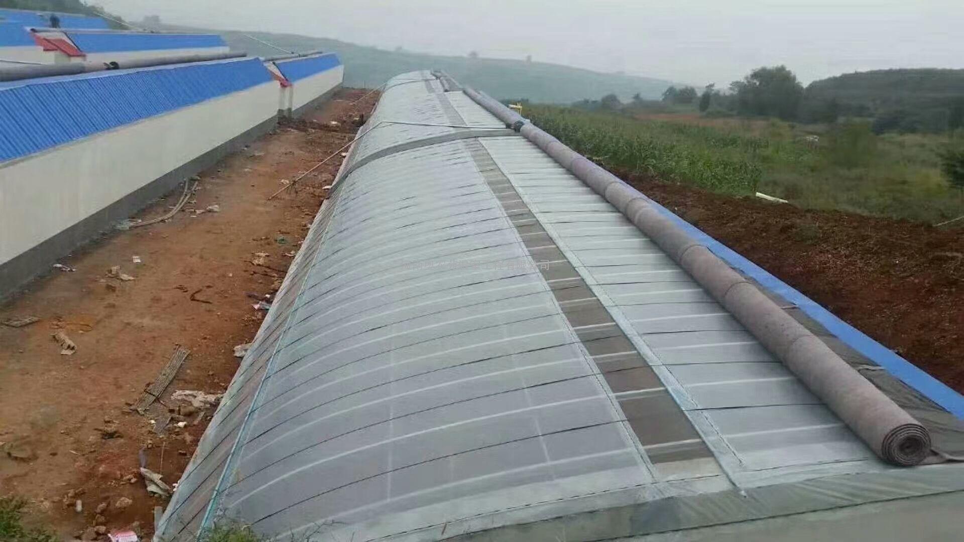 日光温室大棚、薄膜日光温室大棚设计安装