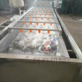 自动大产量洗菜机果蔬气泡清洗机