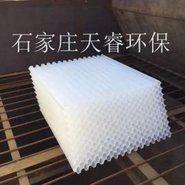 天睿环保全塑乙丙共聚蜂窝斜管填料 处理效果稳定适应性强