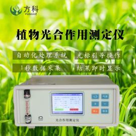 方科光合作用测定仪FK-GH30
