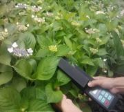 方科拍照式叶面积测量仪YMJ-P