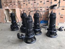 自动搅匀排污泵/JYWQ自动搅匀排污泵/JYWQ100-100-15-7.5