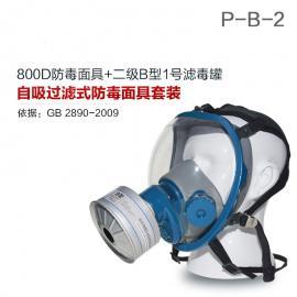 防毒面具无机气体综合防护800D全面罩+HG-LV/P-B-2滤毒罐