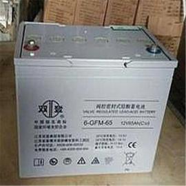 6-GFM-65双登蓄电池12V65AH规格及型号
