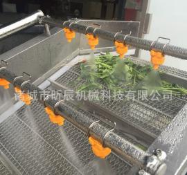 多功能蔬菜清洗机 气泡清洗机 菌类清洗机 不锈钢清洗机