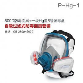 800D全面罩+HG-ABS/P-Hg-1活性炭滤毒盒 水银防护专用防毒面具