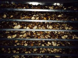 高温空气能香菇脱水烘干机系统设备
