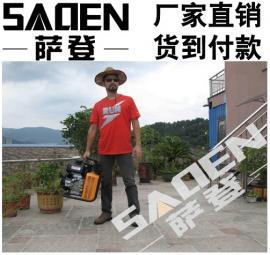 萨登WED-180汽油永磁发电电焊机报价