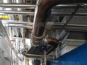 订制机场备用发电机组烟气净化设备 备用发电机SCR脱硝系统