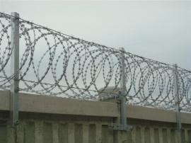 高铁刺丝滚笼-高铁防护刺丝滚笼-刺丝滚笼厂
