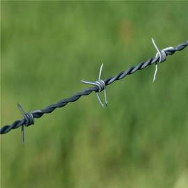 刺绳 镀锌铁蒺藜 带刺铁丝 热镀刺绳防护网 防护效果好