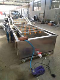 多功能蔬菜清洗机 气泡式油菜清洗机