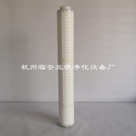 omaiko欧迈克 GL-030E/C、5M-30 聚四氟乙烯管道精密滤芯