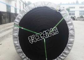 科工煤安证PVC800S整芯阻燃输送带