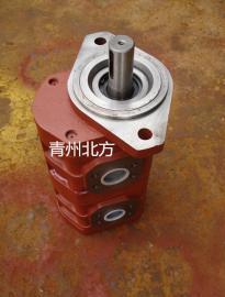 青州北方齿轮泵CBY3040/2006-204L双联泵煤矿钻机