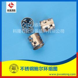 双相钢2205鲍尔环填料与奥氏体304不锈钢鲍尔环填料区别