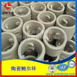 耐酸耐�A耐高�剡x用陶瓷�U���h填料DN16-DN80瓷�|�U���h