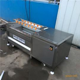 然�T1200型根�o�材清洗�皮�C土豆清洗�C商用